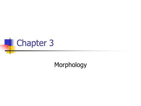 Chapter 3 Morphology. Grammar Safari (xtra credit) Find a morphemically creative word From a naturally occurring source Tell us: What the word means How.