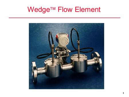 Wedge Flow Element 1.