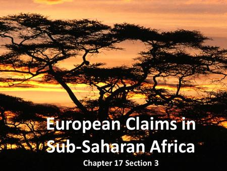 European Claims in Sub-Saharan Africa Chapter 17 Section 3