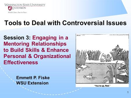 1 Tools to Deal with Controversial Issues Session 3: Engaging in a Mentoring Relationships to Build Skills & Enhance Personal & Organizational Effectiveness.