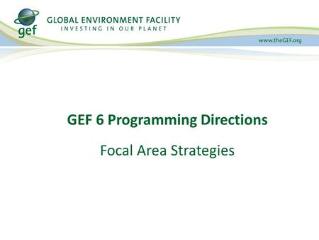 GEF 6 Programming Directions Focal Area Strategies.