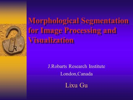 Morphological Segmentation for Image Processing and Visualization J.Robarts Research Institute London,Canada Lixu Gu.
