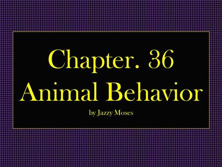 Chapter. 36 Animal Behavior by Jazzy Moses. Vocab. Proximate causation- explanation of the functioning of a biological system at a particular time and.