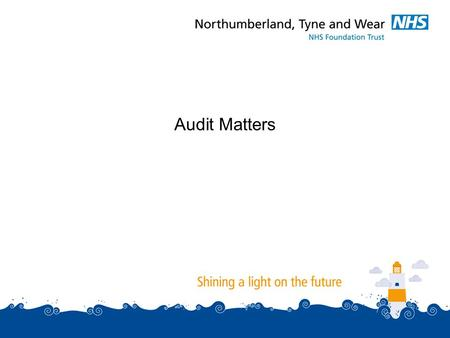 Audit Matters. Three matters to consider:  Annual Management Letter.  External Auditor Performance and Fees.  Change of Audit Firm for 2012/13 audit.