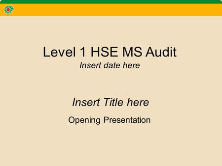 Level 1 HSE MS Audit Insert date here Opening Presentation Insert Title here.
