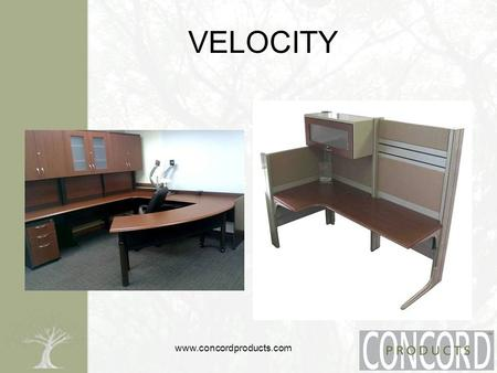 Www.concordproducts.com VELOCITY. www.concordproducts.com Warranty Warrants to the original user. –defect free standard, non-custom products 12 year 5.