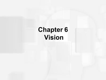 Chapter 6 Vision.