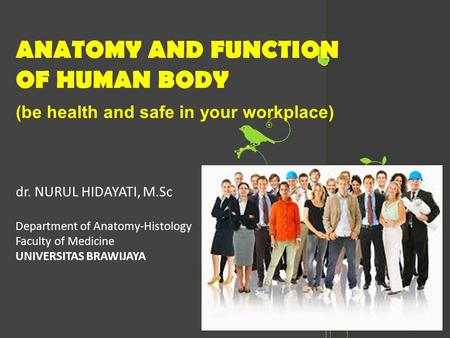 ANATOMY AND FUNCTION OF HUMAN BODY (be health and safe in your workplace) dr. NURUL HIDAYATI, M.Sc Department of Anatomy-Histology Faculty of Medicine.