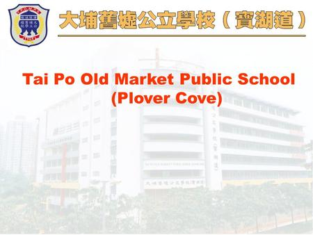 Tai Po Old Market Public School (Plover Cove). Using readers as the organizing focus for curriculum planning 04.12.2004.