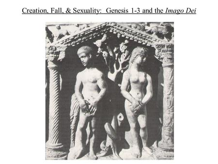 Creation, Fall, & Sexuality: Genesis 1-3 and the Imago Dei.