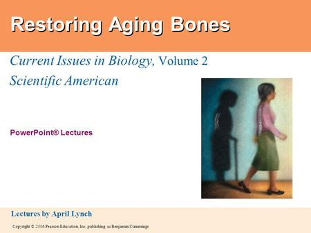 Copyright © 2006 Pearson Education, Inc. publishing as Benjamin Cummings PowerPoint® Lectures Lectures by April Lynch Restoring Aging Bones Current Issues.