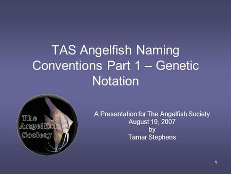 1 TAS Angelfish Naming Conventions Part 1 – Genetic Notation A Presentation for The Angelfish Society August 19, 2007 by Tamar Stephens.
