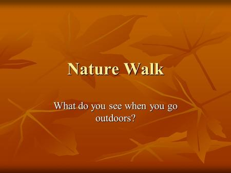 Nature Walk What do you see when you go outdoors?.