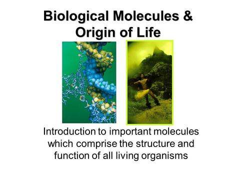 biologically important molecules introduction essay Essay on identifying biological molecules with essay on identifying biological molecules with chemical reaction and test tube essay introduction a.