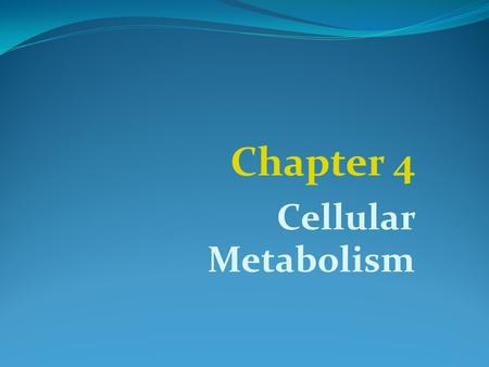 Chapter 4 Cellular Metabolism. 4.1 Introduction A.The total of chemical reactions in a cell -> Metabolism B.Special type of protein called enzymes control.