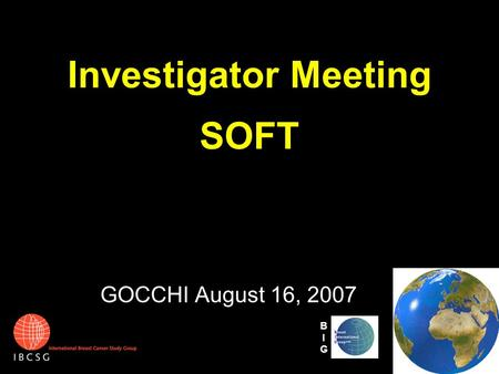 Investigator Meeting SOFT GOCCHI August 16, 2007 BIGBIG.
