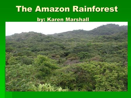 The Amazon Rainforest by: Karen Marshall The Amazon Rainforest by: Karen Marshall.