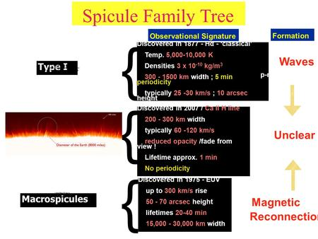 Spicule Family Tree Type I Type II Macrospicules Discovered in 2007 / Ca II H line 200 - 300 km width typically 60 -120 km/s reduced opacity /fade from.