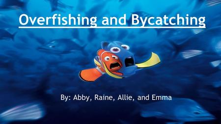 Overfishing and Bycatching By: Abby, Raine, Allie, and Emma.