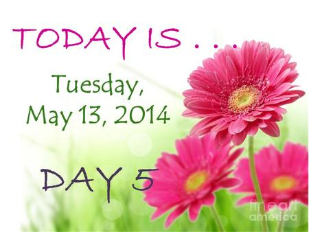 TODAY IS... Tuesday, May 13, 2014 DAY 5 TODAY IS... DAY 2.