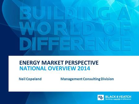 NATIONAL OVERVIEW 2014 ENERGY MARKET PERSPECTIVE Neil CopelandManagement Consulting Division.