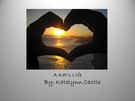 A Kat's Life By: Katelynn Castle. TABLE OF CONTENTS CHAPTER 1 – MY NAME CHAPTER 2 – FREDRICK MANOR CHAPTER 3 – WONDERFUL BUBBLES CHAPTER 4 – IM GROWNING.