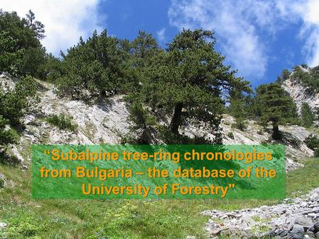 """Subalpine tree-ring chronologies from Bulgaria – the database of the University of Forestry"
