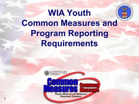WIA Youth Common Measures and Program Reporting Requirements 1.