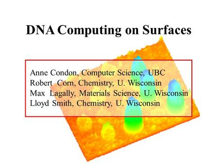 DNA Computing on Surfaces Anne Condon, Computer Science, UBC Robert Corn, Chemistry, U. Wisconsin Max Lagally, Materials Science, U. Wisconsin Lloyd Smith,