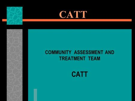 CATT COMMUNITY ASSESSMENT AND TREATMENT TEAM CATT.