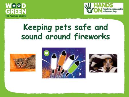 Keeping pets safe and sound around fireworks. Fireworks can be very scary for pets Bonfire night can be really frightening and stressful for many animals.