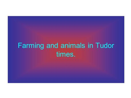 Farming and animals in Tudor times.