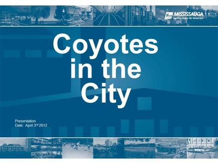 Presentation Date: April 3 rd 2012 Coyotes in the City.