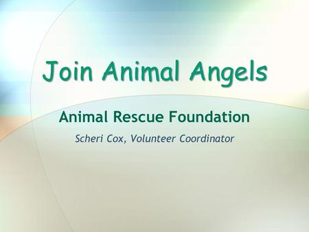 Join Animal Angels Animal Rescue Foundation Scheri Cox, Volunteer Coordinator.