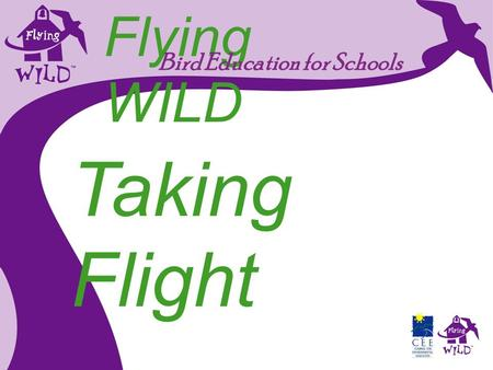 Flying WILD Bird Education for Schools Taking Flight.