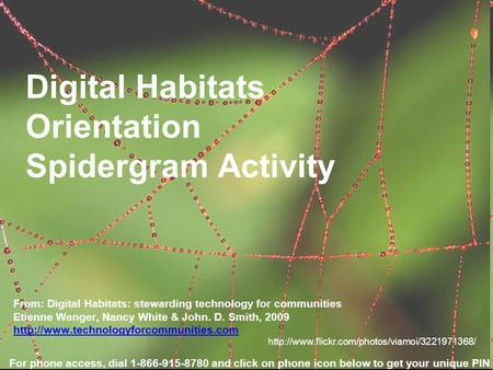 Digital Habitats Orientation Spidergram Activity