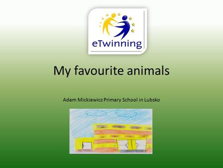 My favourite animals Adam Mickiewicz Primary School in Lubsko.