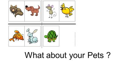 What about your Pets ?.