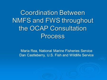 Coordination Between NMFS and FWS throughout the OCAP Consultation Process Maria Rea, National Marine Fisheries Service Dan Castleberry, U.S. Fish and.