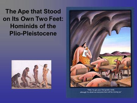 The Ape that Stood on Its Own Two Feet: Hominids of the Plio-Pleistocene.