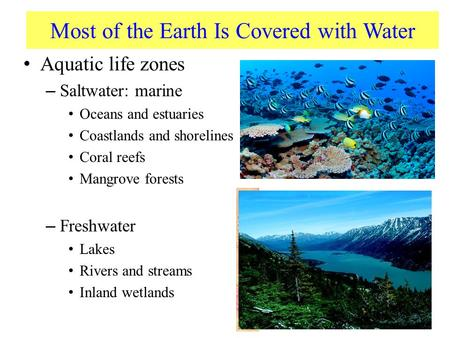 Most of the Earth Is Covered with Water Aquatic life zones – Saltwater: marine Oceans and estuaries Coastlands and shorelines Coral reefs Mangrove forests.