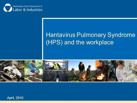 Hantavirus Pulmonary Syndrome (HPS) and the workplace April, 2010.