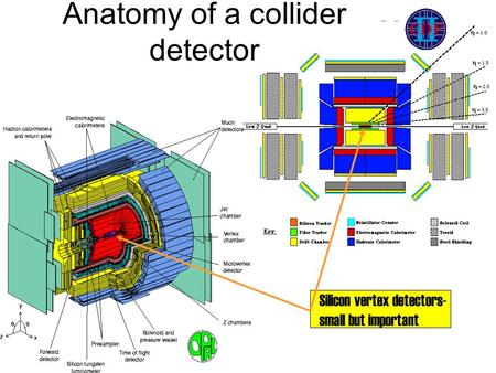 Anatomy of a collider detector Silicon vertex detectors- small but important.
