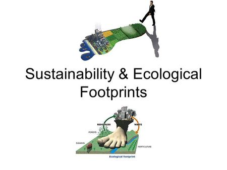 Sustainability & Ecological Footprints. Ecological Footprint The land and water area that is needed to support the material standard of living of a given.