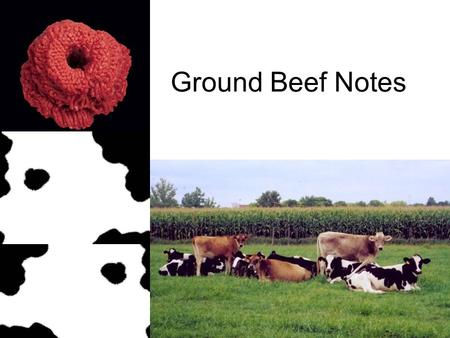 "Ground Beef Notes. Meat labeled ""hamburger meat"" is allowed to have fat added. Ground beef only contains the fat that is there naturally. What is the."