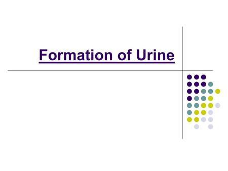Formation of Urine. 1. Glomerular Forced Filtration / Pressure Filtration Recall, The renal artery splits into numerous arterioles, each feeding a nephron.
