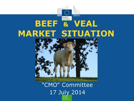 BEEF & VEAL MARKET SITUATION CMO Committee 17 July 2014.