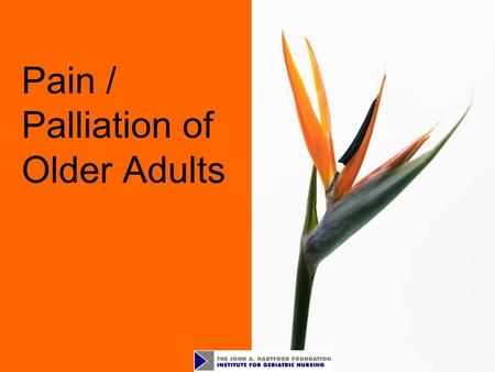 Pain / Palliation of Older Adults. 2 Objectives Identify the incidence of pain in older adults Assess pain using client self-report and / or validated.