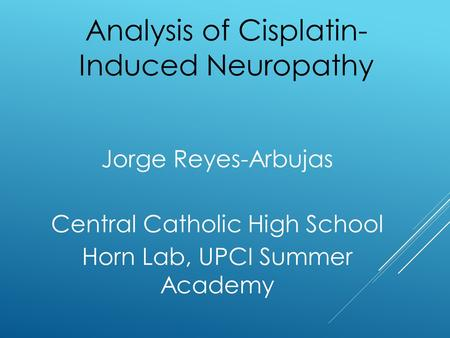 Jorge Reyes-Arbujas Central Catholic High School Horn Lab, UPCI Summer Academy Analysis of Cisplatin- Induced Neuropathy.