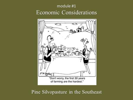 Module #1 Economic Considerations Pine Silvopasture in the Southeast.